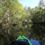 STUDENTS CAN RENT A CANOE AND PADDLE WAY FAR BACK IN THE RIVER. BEST PART WAS THE PARK IS RIGHT ACROSS CAMPUS.
